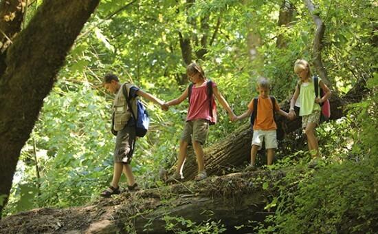 Kids hiking in woods-rijh2